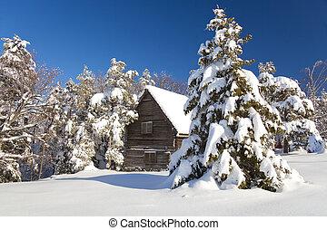 Serbia, Divcibare, mountain house