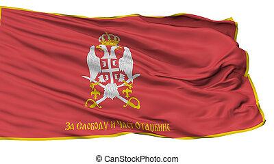 serbian, bevæbne fremtvinge, omvendt, flag, isoleret, på...