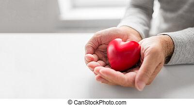 serce, cupped, formułować, siła robocza, senior, czerwony, człowiek