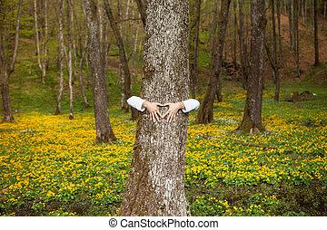 serce, drzewo las, ręka