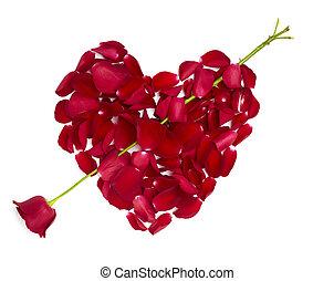 serce, kwiat, miłość, róża, valentine, płatki, formułować, dzień