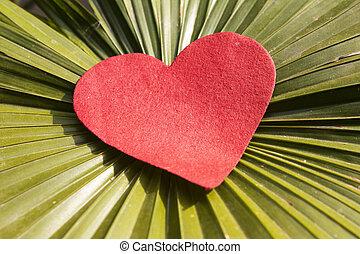 serce, liść, czerwony