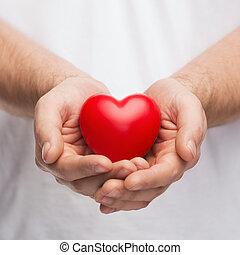 serce, mężczyźni, pokaz, cupped ręki, czerwony