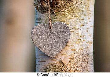 serce, miłość, drzewo, abstrakcyjny, pień