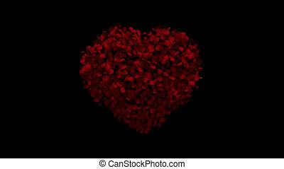 serce, ożywienie, z, podlatywałem płatki