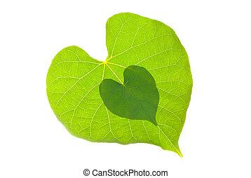 serce, para, liść, kasownik modelują