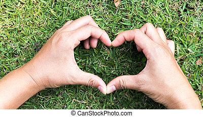 serce, pojęcie, miłość, mający kształt, ręka, closeup, zielona trawa