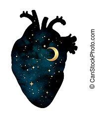 serce, wnętrze, odizolowany, ludzki, wszechświat