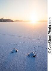 serein, hiver, lac gelé, matin, vue