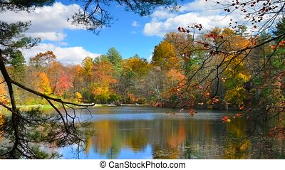 Serene lake timelapse in the fall at Pine Grove Forrest State Park, Pennsylvania, USA time lapse
