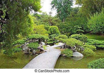 serene path - walkway through koi pond and banzai tree...