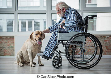 Serene senior desiabed man petting the hound indoors