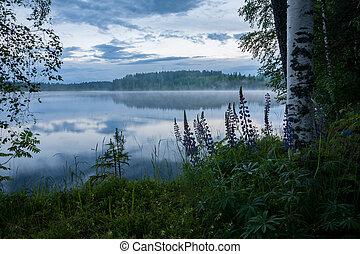 Serene summer lake landscape at dusk