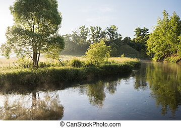 Serene summer landscape. Quiet river and green trees on banks in sunny morning