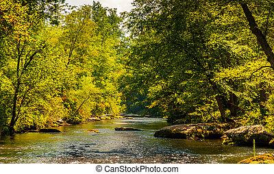 Serene view of the Gunpowder Falls, in Baltimore County, Maryland.