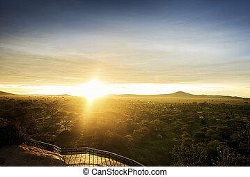 Serengeti National Park in the sunset
