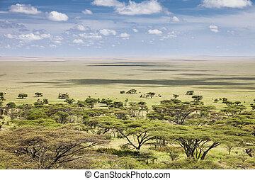 Serengeti - The vast plains of the Serengeti, Tanzania,...