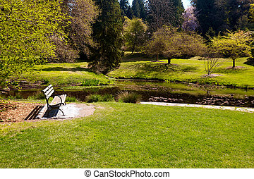 Serenity - serene landscape - bench and pond in Seattle...
