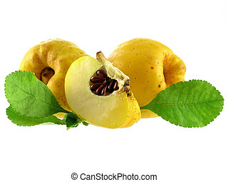 quince - series of vegetables and fruits: quince isolated on...