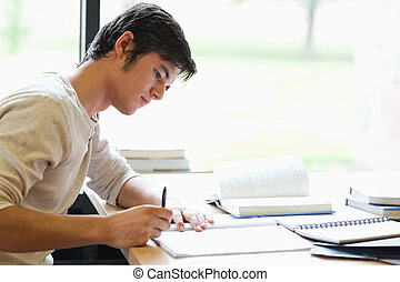 serieuze , mannelijke student, schrijvende