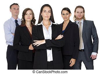 serio, gruppo, affari