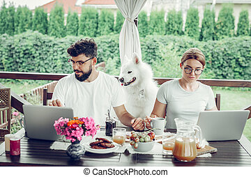 Serious focused married couple engaging in remote work on laptops