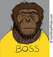 serious monkey - Portrait of a monkey dressed in a yellow T-...