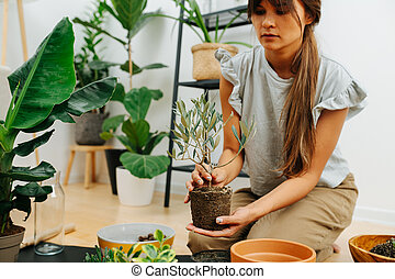 Serious woman in living room, replanting house plant from pot to pot. Cropped