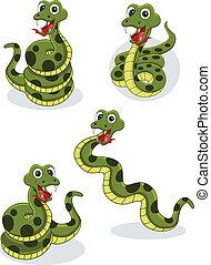 serpiente, colección