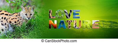 Serval with text Love Nature - Banner with serval and text...