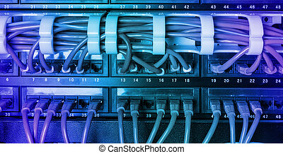 Server rack with blue internet patch cord cables