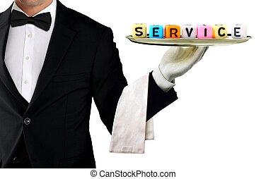 serveur, concept, ton, service