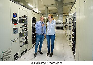 serveur, service, réseau, salle, ingénieur