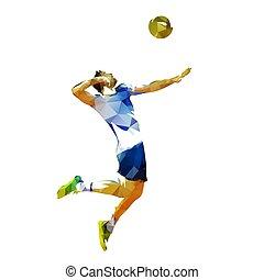 servindo, abstratos, voleibol, polygonal, jogador, vetorial, ilustração, bola