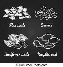 Sesame, pumpkin, sunflower and flax seeds isolated on chalkboard. Vector illutration