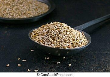 Sesame seeds in a metal scoop