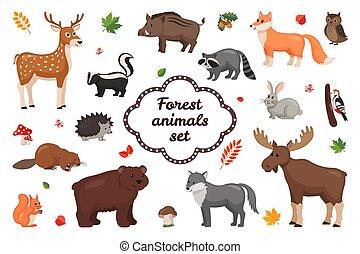 set., állatok, erdő