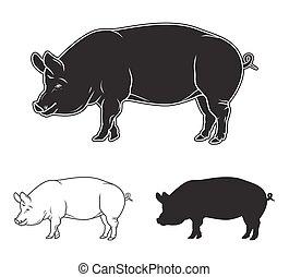 set., イラスト, 手, ベクトル, 引かれる, 豚