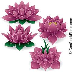 set, 1, lotus, gekleurde