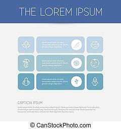 set, affettato, infographic, design., fungo, cibo, simboli, 9, essere, usato, agrume, editable, icons., include, web, tale, more., mobile, contorno, pepe, ui, lattina