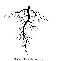 set., albero, isolato, illustrazione, vettore, fondo, sotterraneo, bianco, radici