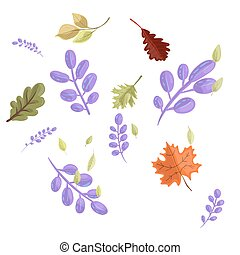 Set autumn leaves drawn in cartoon style isolated on white background.