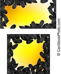 background with sunflower seeds