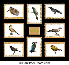 Set birds postage stamps