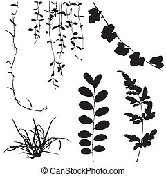 set black silhouettes of leaf and vine plant Vector...