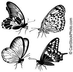 Set black white butterflies of a ta