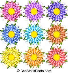 set, blauwe , paarse , sinaasappel, flowers., gele, witte , gestreepte , rood, roze