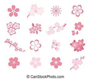 set, blossom , kers, japanner, vector, sakura, pictogram