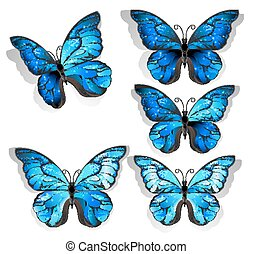 Set blue butterflies morpho