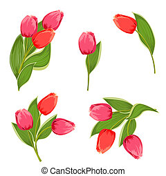 Set bouquets of tulips for your design